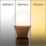 Die SEBSON E27 LED mit den 3 Lichtfarben